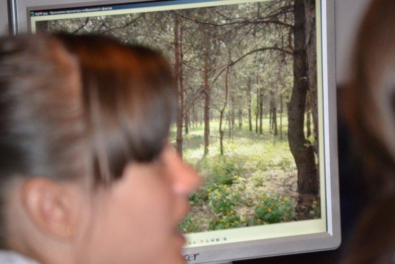 Фото к Наука non-stop: в воронежском информационном центре подвели итоги интернет-марафона «Путешествие в науку»