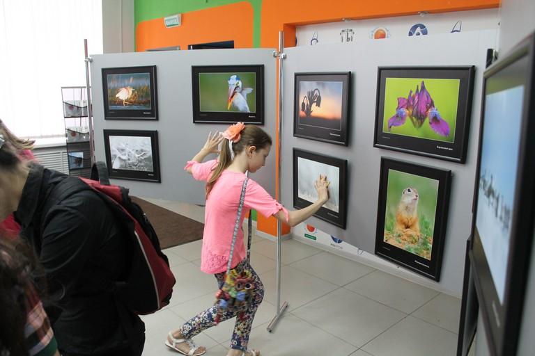Фото к Доказательство от прекрасного: в Санкт-Петербурге открылась выставка венгерского фотографа Балинта Винце