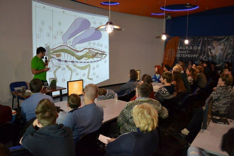 Фото к Лекторий «О науке»: в Санкт-Петербурге поговорили о самых многочисленных животных на Земле — насекомых